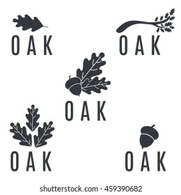 Set of logos on an oak tree with leaves and acorns.Vector illustration