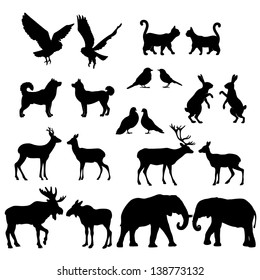 Set of lovely animal lovers couples silhouette: deers, owls, pigeons, elephants, moose, roes, hares, birds, cats, dogs.