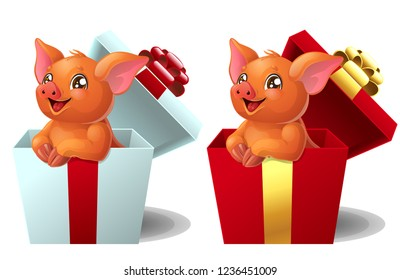 Set the lovely red little Duroc breed pigs sits in the gift white and red box. A cartoon vector illustration isolated on white.
