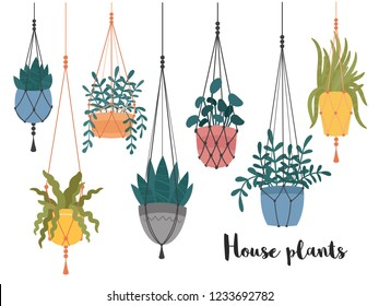 Set of macrame hanging plants in pots. Hangers with potted indoor garden flowers. Handmade home decorations made of cotton rope or cord.Hand drawn cartoon, Scandinavian Hygge style.Vector illustration