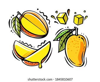 set of mango fruits on white background