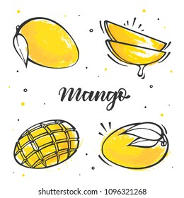 Set of mango illustration in sketch style. Isolated vector on white background.