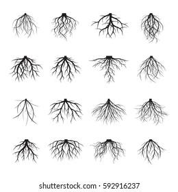 Set of many different black Roots. Underground plant element. Vector outline Illustration.