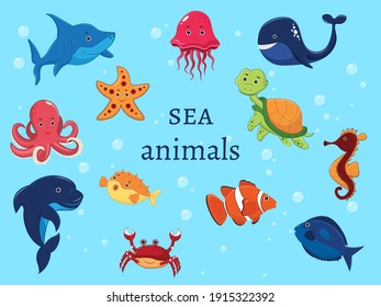 Set of marine animals under water. Whale, octopus, Clown fish, Turtle, Shark, Dolphin, Starfish, Horse, Hedgehog, Fish, Jellyfish. Vector illustration