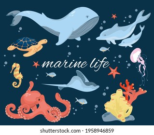 Set with marine inhabitants living on the ocean floor. Marine animals. A graphic element of summer or marine design. Vector illustration in cartoon style.