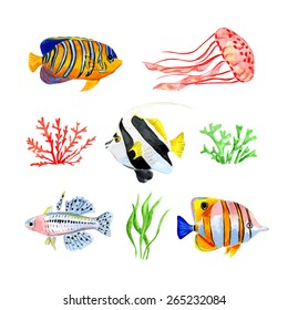 Set of marine Tropical fish. Vector illustration. Watercolor background.
