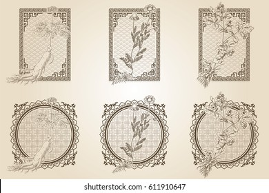 Set of medicina herbs with patterned frames: ginseng, chamomile, celandine. Vector illustration in engraving style, in sepia.