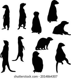 Set of Meerkat Silhouette vector Illustration Eps10