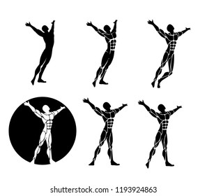 A set of men silhouettes with anatomy muscles visible expressing well being happiness