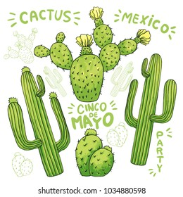 Set of mexican cactus with spines or thorns and flowers as banner for cinco de mayo holiday or celebration. Edible or eatable, esculent cacti like saguaro, indian fig or mammillaria cactus.Latin theme