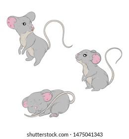set of mice. sleeping mouse