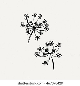 Set of milfoil or wet dandelion flowers. Ink traced collection.