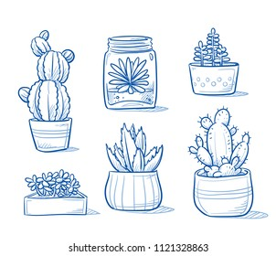 Set of mixed succulents and cactus plants in garden pottery and glasses. Hand drawn blue outline line art cartoon vector illustration.