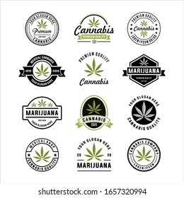 Set of Modern cannabis and marijuana logo templates, logo design elements. Vector illustration and logotype template, Medical cannabis logo
