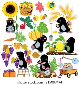 set with mole working in the garden, autumnal season harvest, cartoon pictures for little kids