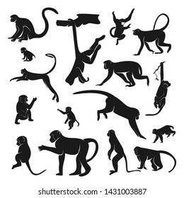 Set of Monkey Design Vector. Silhouette of Monkey. Vector illustration