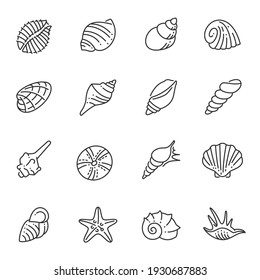 Set of monochrome contour sea shells line icon vector illustration. Collection of different simple ocean underwater wildlife shellfish isolated on white. Various aquatic exotic marine nautical mollusk
