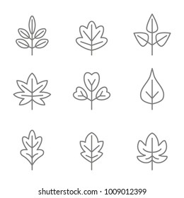 set of monochrome icons with vector leaves for your design