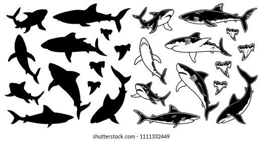 Set of monochrome Shark vector silhouettes. Sea fish, animal swimming, fauna illustration. For graphic emblems