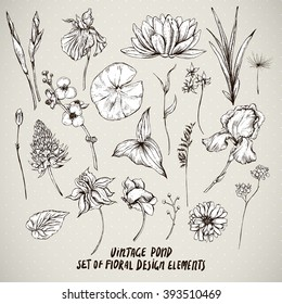 Set of monochrome vintage pond water flowers vector elements, Botanical flower decoration shabby chic illustration reeds, lily, iris, isolated natural floral wildflowers leaves and twigs.