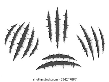 Set of monster claws, hand scratches or rip through white background with shadow and light