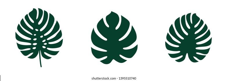 set Monstera deliciosa Leaf Logo Vector Template Illustration Design. Vector EPS 10.
