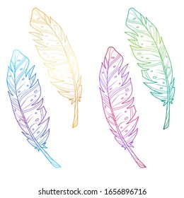 Set of multicolored feathers. Bright gradient. Vector illustration. Isolated objects on a white background. Stock vector illustration.