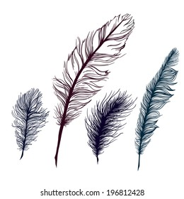 Set of multicolored feathers, isolate. With blue background. Vector