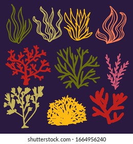 Set of multicolored vector coral and seaweed in doodle style, hand-drawn isolated on purple background. Design elements on the marine and underwater theme in red, yellow, green shades.