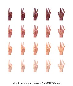 set of multiethnic hands southpaw number gesture isolated vector