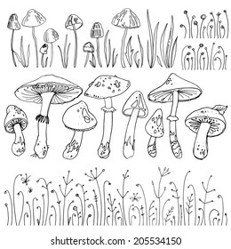 Set mushrooms, forest herbs, poisonous mushrooms. Vector elements, pattern isolated on white. Drawing a black line