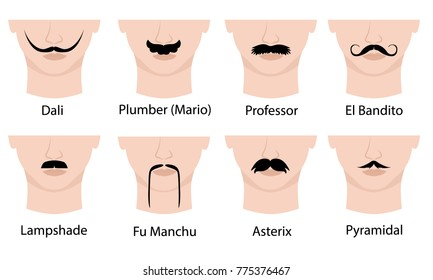 Set of mustaches on mans face. Isolated on white background. Vector illustration. Moustaches guide with names: Dali, Plumber ( Mario), Professor, El Bandito, Lampshade, Fu Manchu, Asterix, Pyramidal.