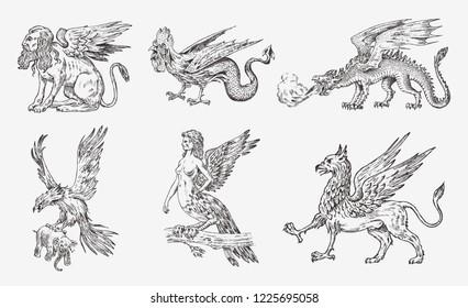 Set of Mythological animals. Chinese dragon Harpy Sphinx Griffin Mythical Basilisk Roc Woman Bird. Greek creatures. Engraved hand drawn antique old vintage sketch.