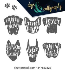 Set names dog breeds in calligraphy handmade design.  Elite premium labels. Create retro and vintage  posters, brochures, postcards.