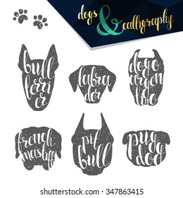 Set names dog breeds in calligraphy handmade design.  Elite premium labels. Create retro and vintage  posters, brochures, postcards.