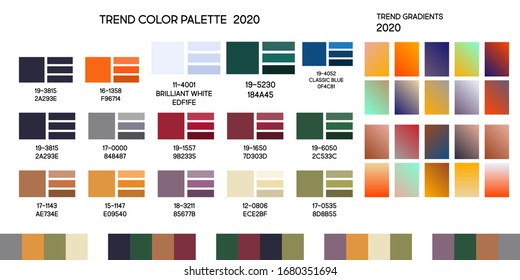 Set new fashion modern universal color trend 2020. Color palette forecast of the future color trend for the convenience of creating your design and your business