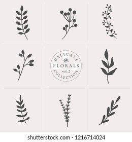 A set of nine hand drawn floral elements in gray and white isolated on pastel pink background.