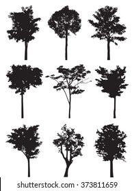 Set of nine trees vector silhouette,  black shadow plant flat icon,  grey symbol forest isolated design, gray jungle botany shape outline,  wild icon cartoon tattoo.