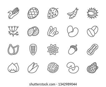 Set of Nuts, Seeds and Vegetables Line Icons. Corn Cob, Hop Cone, Peas, Chestnut, Dill, Coconut, Beans, Badian Grains, Acorn, Peanut, Walnut and more. Pack of 48x48 Pixel Icons