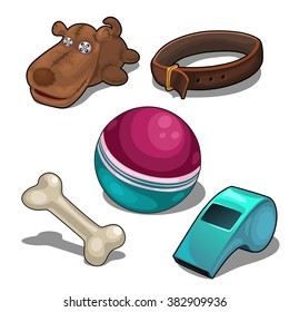 A set of objects for playing with a pet dog. Vector illustration.