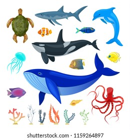 Set of ocean animals on white background.Vector illustration.