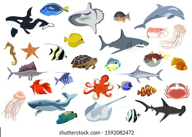 Set of ocean creatures vector. Fish, shark, orca, octopus and other sealife illustration.