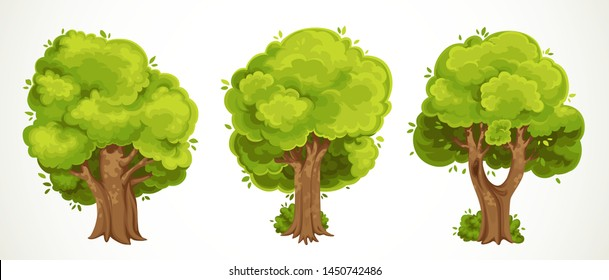 Set of old big thick trees with summer green foliage vector drawing isolated on white background
