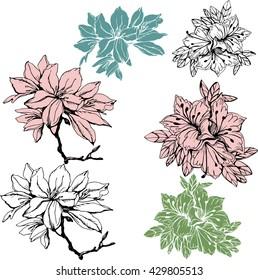 Set with Oleander and azalea flower . Silhouette  pattern for celebration design.
