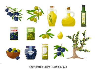 Set of olive oil in glass bottles, branches, tree, olive products. Objects in cartoon style isolated on white background.