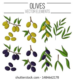 Set of olives in cartoon style. illustration for design, web and decor for the festival of olives