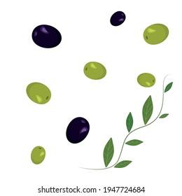Set olives. Green branch with leaves. Vector illustration