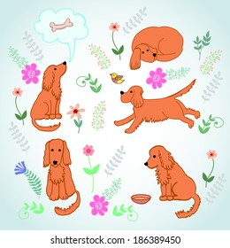 Set on the life merry spaniel. Elements for design. Hand drawing.