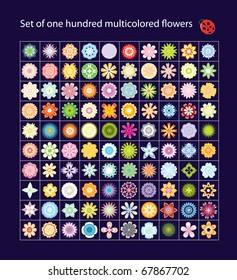 Set of one hundred multicolored  flowers vector