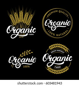 Set of Organic hand written lettering logos, labels, badges or emblems for natural fresh products. Ears of wheat. Isolated on black background. Vector illustration.